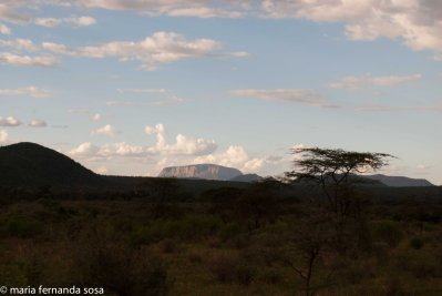 KenyaNature (2 of 9)