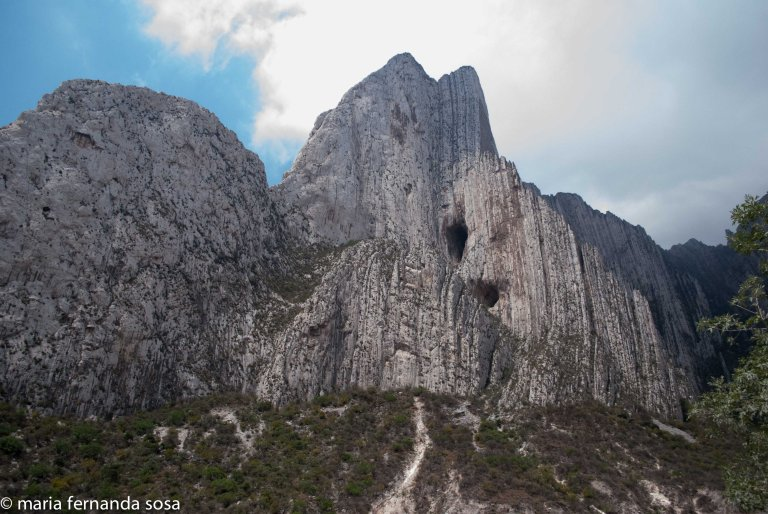Monterrey_nat-1