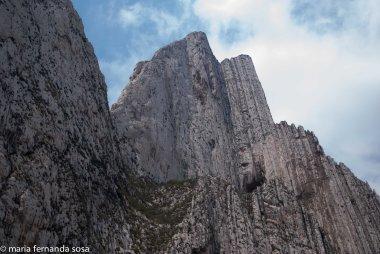 Monterrey_nat-5