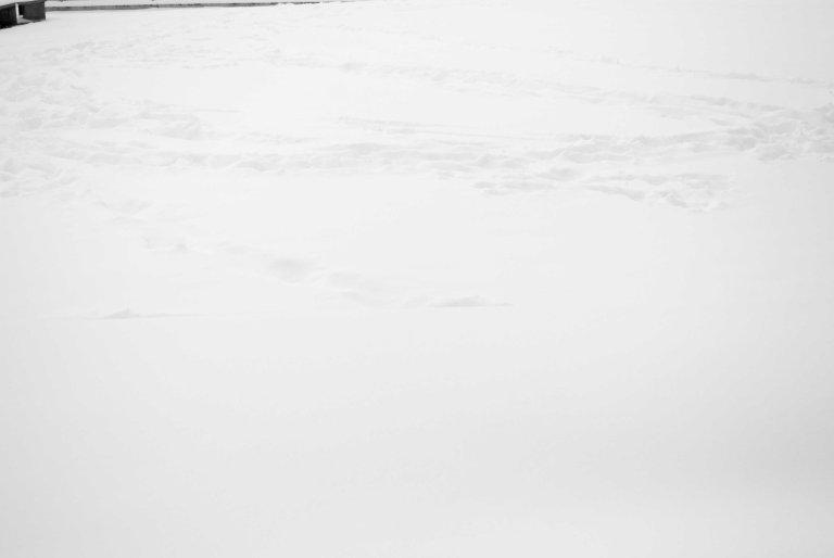 nieve-11