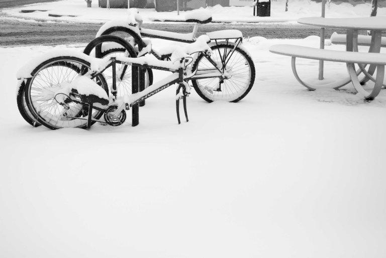 nieve-7