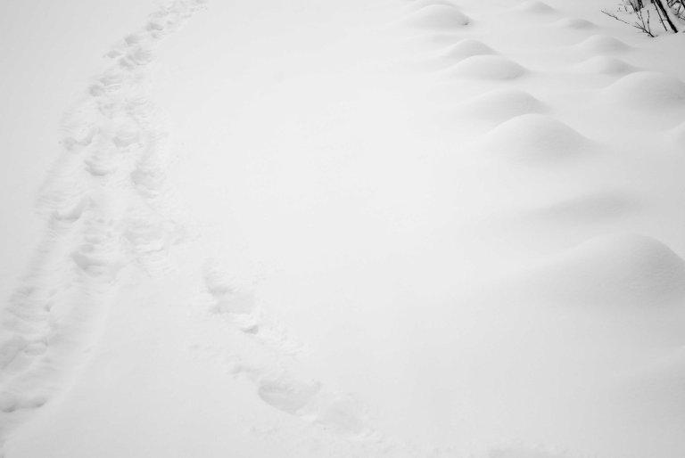 nieve-9