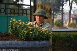 Hanoi2014--18