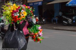 Hanoi2014--3