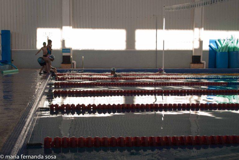 swimming-12
