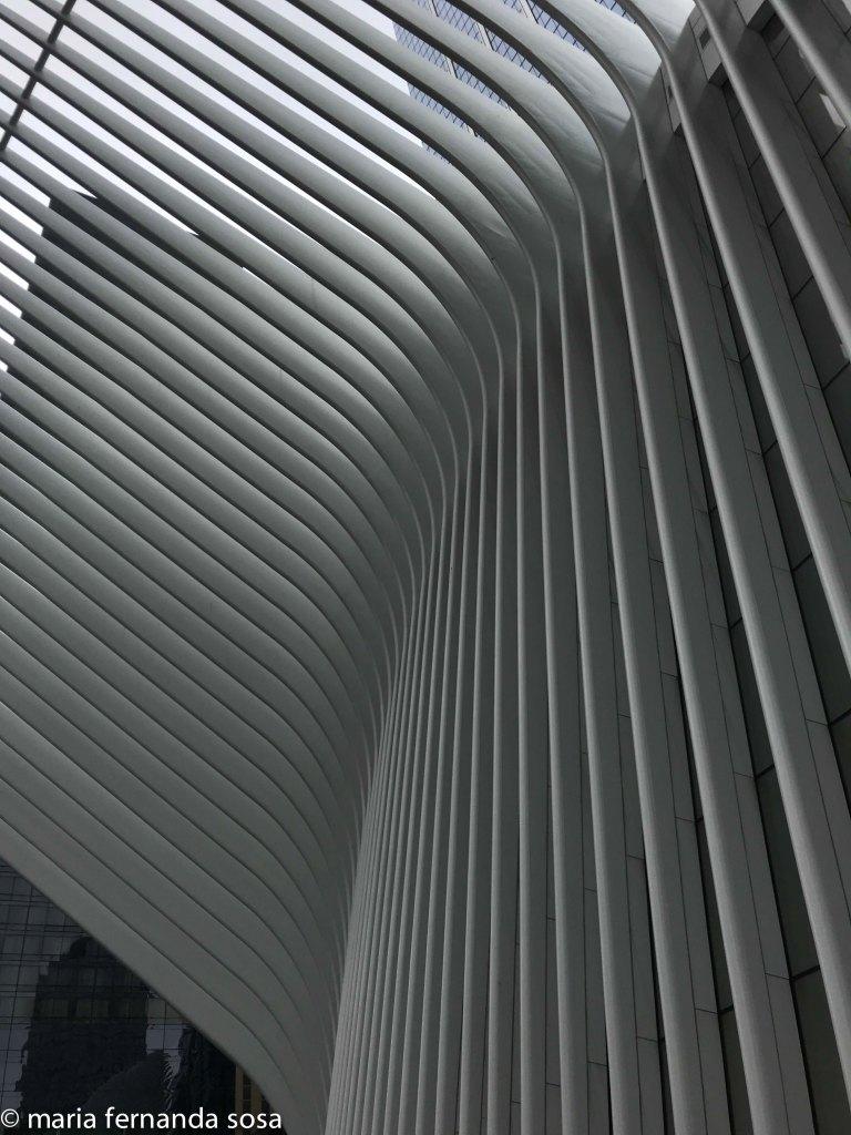 NYC18-23