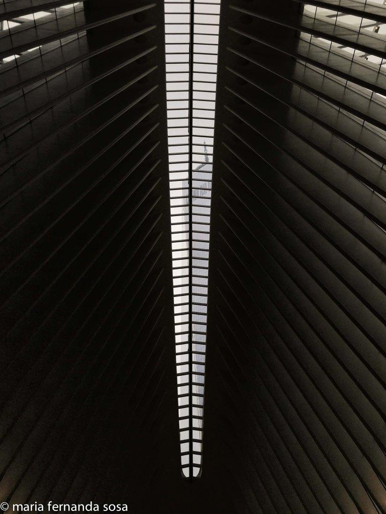 NYC18-24